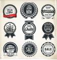 retro vintage labels collection vector image