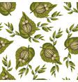 seamless pattern with colorado beetle vector image vector image