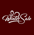 white text winter sale vector image