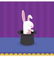 Rabbit in Magicians Hat vector image vector image
