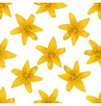 yellow naturalistic lily flower on white pattern vector image vector image