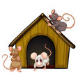 group cute mouses with little house isolated vector image