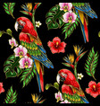seamless pattern with ara parrot embroidery vector image vector image