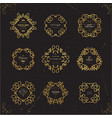set luxury signs vector image vector image