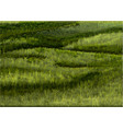 south downs grass background vector image vector image