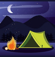 camping zone with tent and nightscape vector image vector image