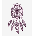 Ethnic dream catcher with feathers American vector image
