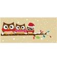 owl family on branch christmas banner vector image