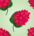 Seamless texture red rhododendron twig vector image vector image