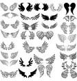 set bird wings for heraldry design vector image
