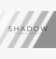 shadow overlay effect transparent soft light vector image vector image