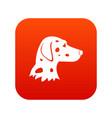 dalmatians dog icon digital red vector image vector image