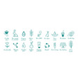 eco friendly ecology hand drawn icons set vector image vector image