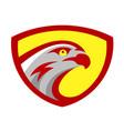 falcon or hawk head sport logo mascot design vector image vector image