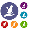 hand holding a cat icons set vector image vector image
