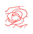 rose icon design template vector image vector image