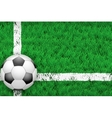 White line and football ball on Sport grass field vector image vector image