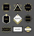 cute black geometrical vintage emblems on gray vector image