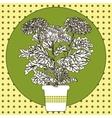 flower in pot vector image vector image