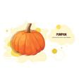 fresh pumpkin sticker tasty vegetable icon healthy vector image
