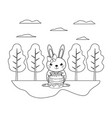 line female rabbit with sweet donuts in the vector image vector image