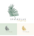 palm coconut tress logo for resort hotel vector image vector image