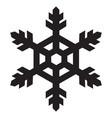 snowflakes icon vector image