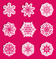 Snowflakes with shadow vector image vector image