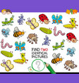 find two identical bug pictures game for kids vector image