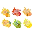 Fruits splash set of labels Fruit splashes drops vector image vector image