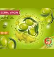 olive oil design banner with olive branch vector image