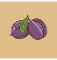 Plums in vintage style Colored vector image vector image