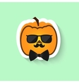 Pumpkin in sunglasses and bow tie vector image