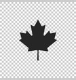 canadian maple leaf icon isolated vector image