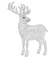 deer adult coloring page vector image