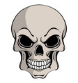 human skull in ink hand drawn vector image vector image