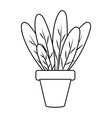 plant pot icon black and white vector image