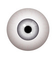 realistic human eyeball vector image vector image