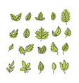 set isolated green leaves icons on white vector image vector image