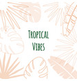 summer tropical leaves silhouette palm leaves vector image