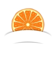 Orange with paper banner vector image