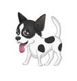 dog chihuahua vector image