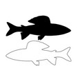 grayling silhouette vector image