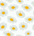 Seamless texture spring white flowers daisies vector image vector image