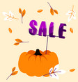 autumn holiday sale banner with big pumpkin and vector image vector image