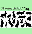 collection silhouettes rabbits and its cubs vector image vector image