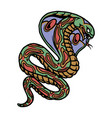 colorful king cobra tattoo template vector image