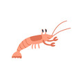 cute red crayfish or crawfish with funny eyes vector image