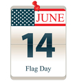 Flag Day vector image vector image