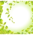Green leaves frame isolated on white EPS 10 vector image